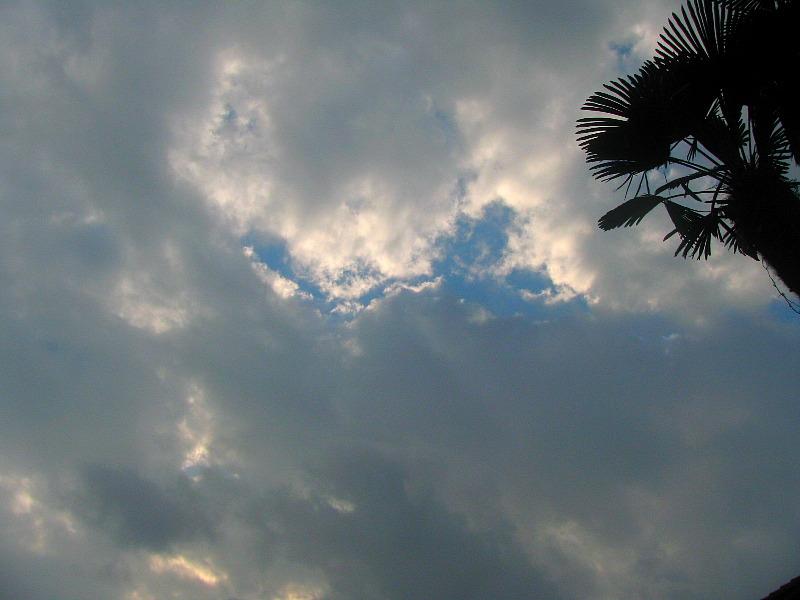 2009年10月29日午後3時