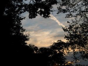 2009年11月9日午後4時鎌倉二階堂