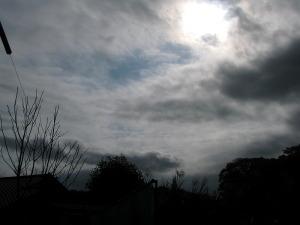 2009年11月12日午後1時