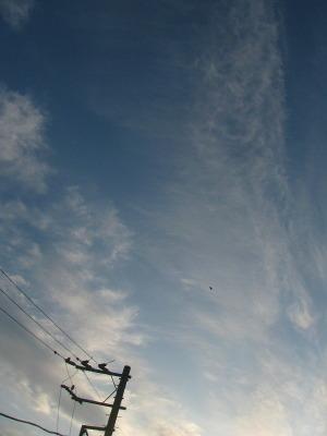 2009年11月15日午後3時45分鎌倉市二階堂