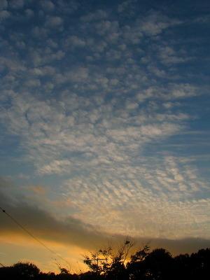 2009年11月27日午後4時鎌倉市二階堂