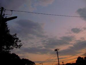 2009年11月28日午後4時