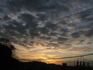 2009年12月5日鎌倉市二階堂にて