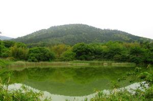 井寺池のほとりより三輪山を望む