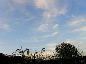2010年8月30日午後6侍3分