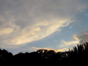 2010年8月30日午後6侍6分