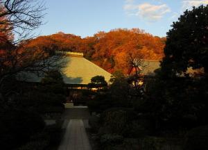 神奈川県鎌倉市 浄妙寺