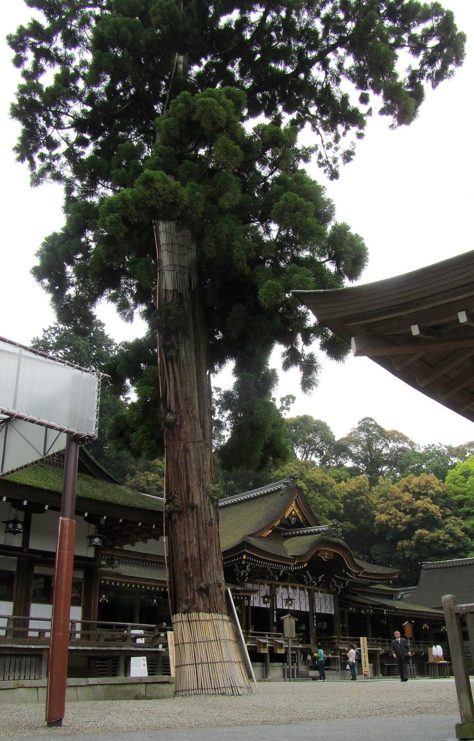 大神神社 奈良県桜井市