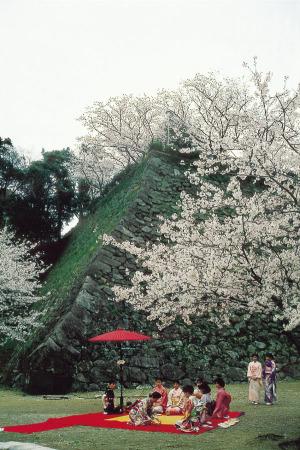 延岡市 城山公園 みやざき観光情報フリー写真