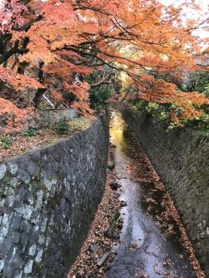 2019年12月14日鎌倉二階堂川